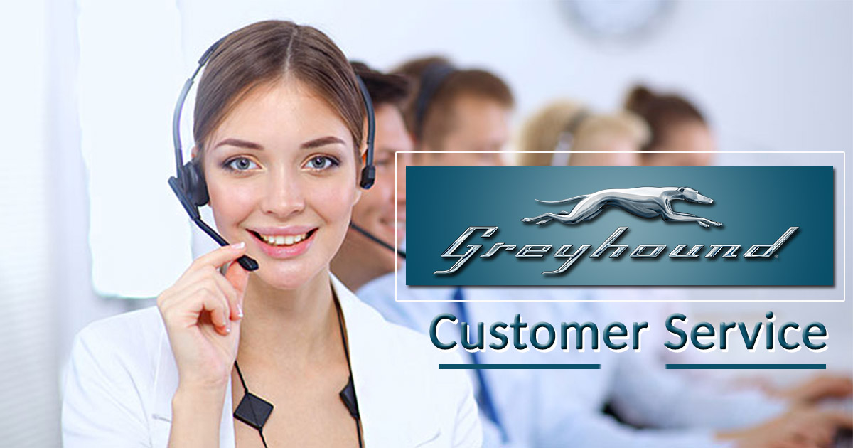 Greyhound Customer Service
